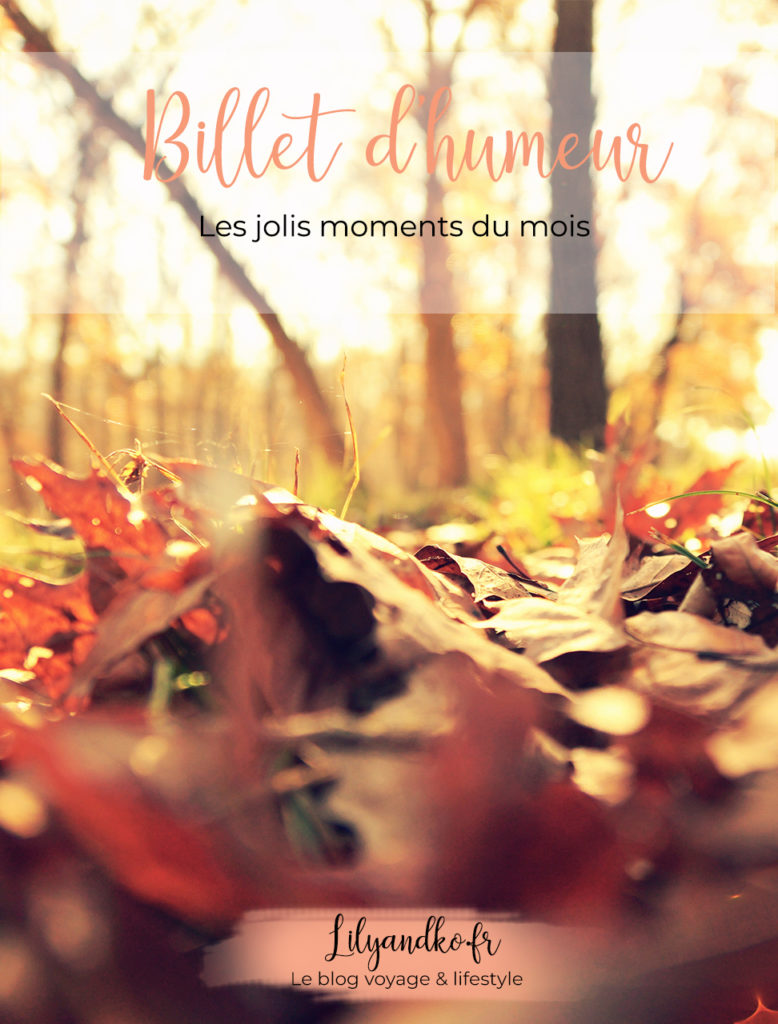 Photo pinterest automne les jolis moments du mois