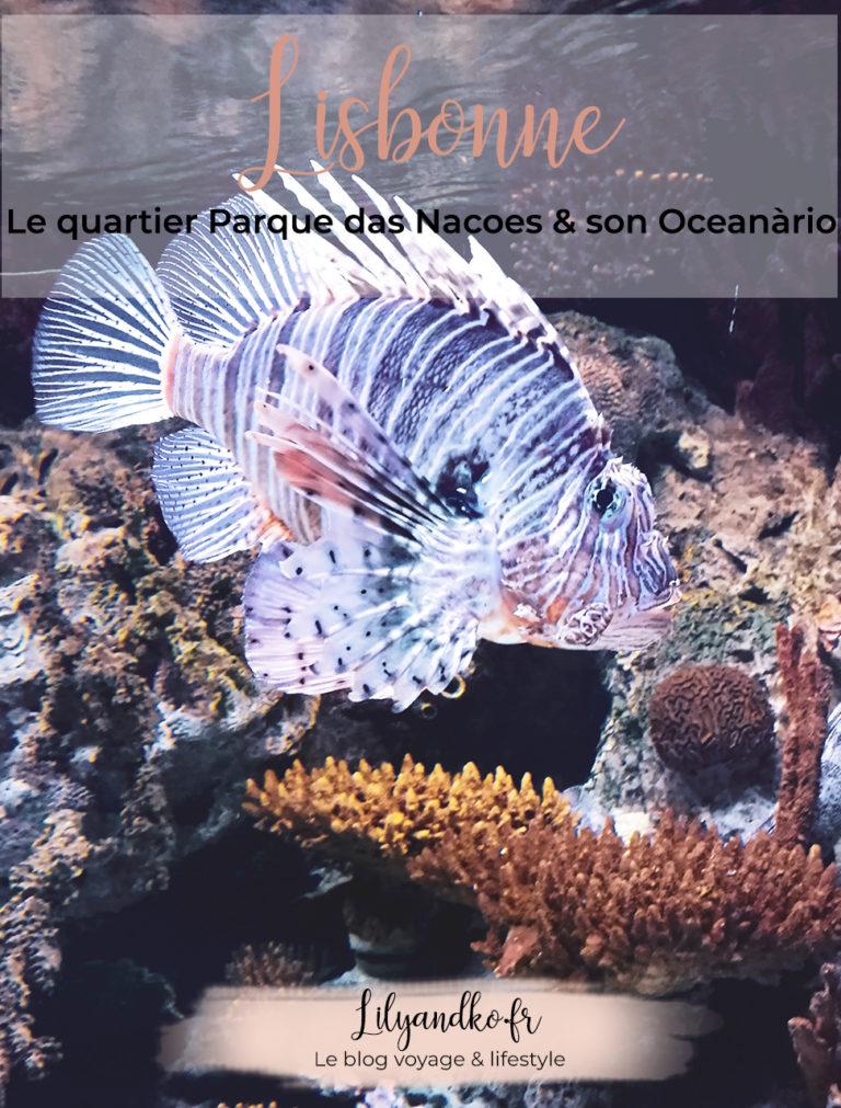 banniere pour pinterest oceanario parque das nacoes lisbonne