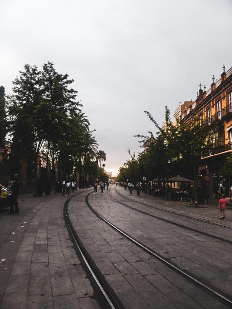 Seville -avenida de la constitucion