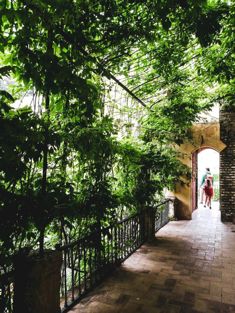 Seville palais alcazar patio exterieur