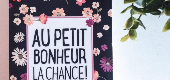 """Livre """"au petit bonheur la chance"""" de Aurélie Valognes"""