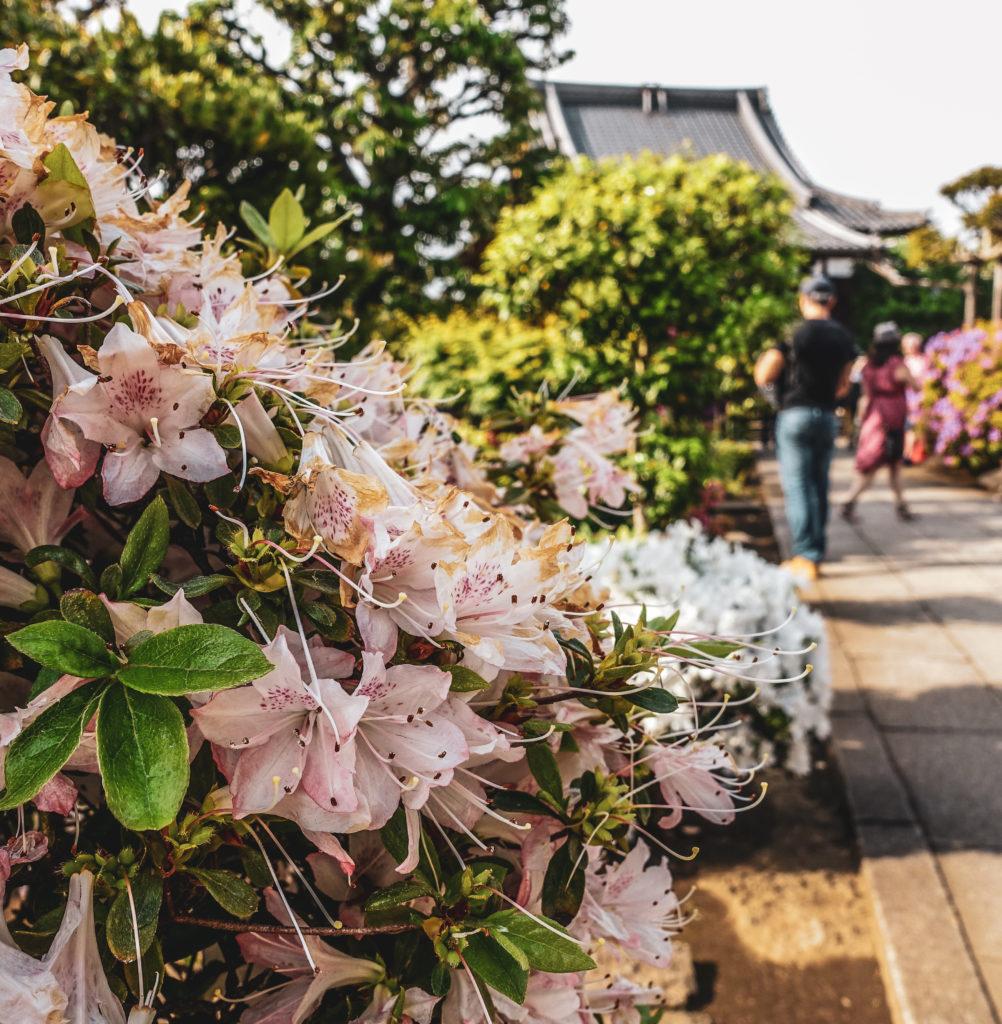 Quartier Yanaka à Tokyo temple