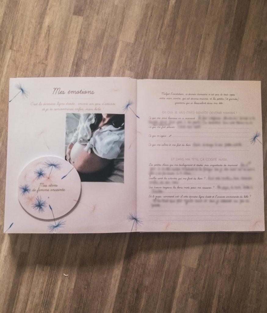 mon carnet de grossesse